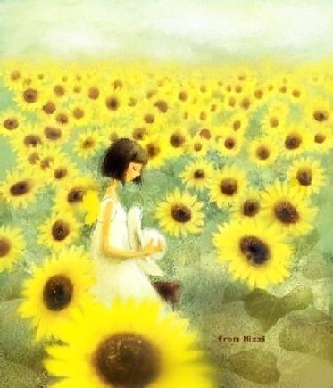 Chàng trai trong hoa hướng dương
